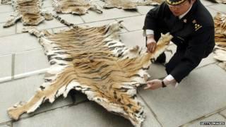 चीन, बाघ की खाल