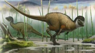 Динозавр в перьях