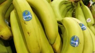 pisang,