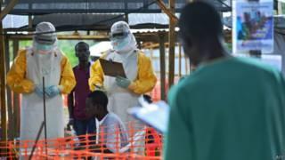 इबोला वायरस का संक्रमण