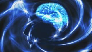 मनुष्य का दिमाग