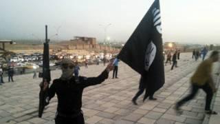 تنظيم الدولة الاسلامية
