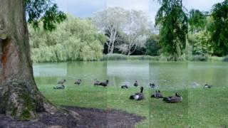 Un paisaje tomado con tres ajustes diferentes