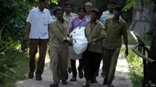 दिल्ली के चिड़ियाघर में युवक को बाघ ने मारा