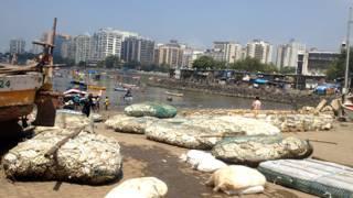 मुंबई, समंदर का किनारा