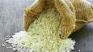 चावल, धान