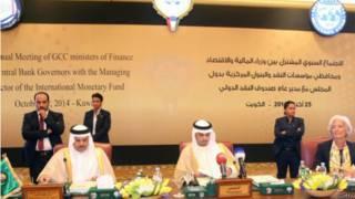 وزراء المالية في مجلس التعاون الخليجي