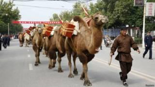 所謂「一帶一路」指的是絲綢之路經濟帶和21世紀海上絲綢之路(圖為陝西古絲綢之路文化表演)