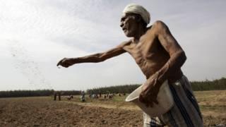महाराष्ट्र किसान