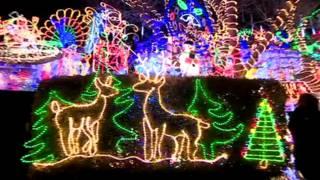 英國聖誕燈