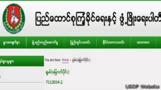 USDP Website