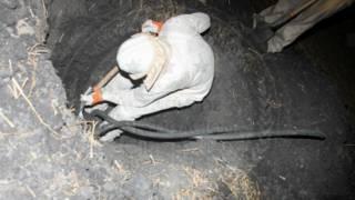 Agentes revisan un sitio de robo de gasolina a un ducto de Pemex. Foto: PGR