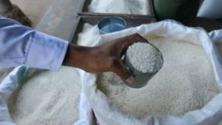 myanmar_rice