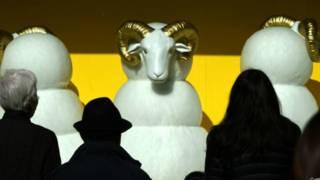 羊年到底是什麼羊難煞不少人