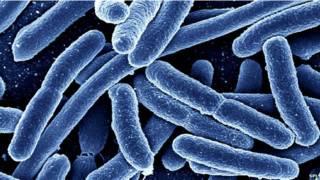 एंटीबायटिक का प्रयोग बढ़ रहा है-एसपीएल