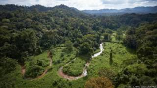 Hallazgo en Honduras