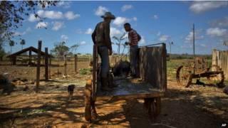 Кубинская ферма