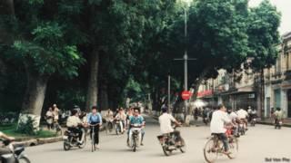 Thủ đô Hà Nội có nhiều hàng cây xanh từ bao đời (Ảnh: Bùi Văn Phú)