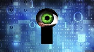 Espía en internet.