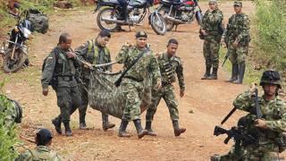 Pablo Catatumbo, FARC