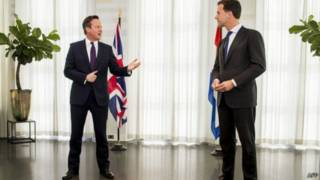 卡梅倫會見荷蘭首相馬克·呂特