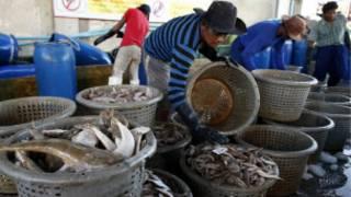 _thai_fishing_myanmar