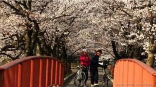 Como é viver nas cidades mais seguras do mundo
