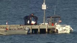 Австралийские спасатели с пойманной акулой
