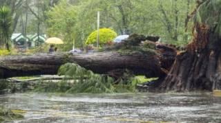 चक्रवाती तूफ़ान गोनी से तबाही