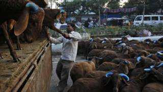ईद, भारत, बकरे