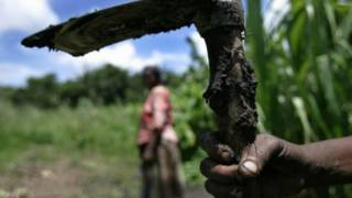 مزارع أفريقي