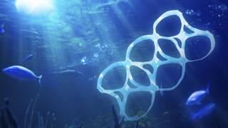 Рыба, пластик