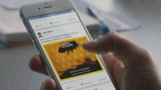 _facebook_articles_