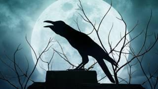 Ворона на фоне полной луны