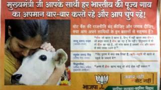 गाय, भाजपा पोस्टर