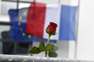 Цветок на фоне французского флага
