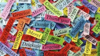भाषाएं