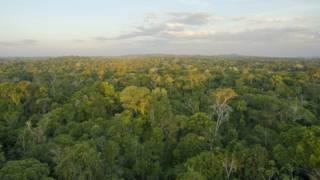 Estudo alerta para emissões de novas hidrelétricas na Amazônia