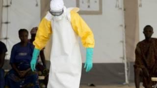 Ebola sierra