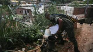 Солдаты научат выкуривать комаров в местах, где они размножаются