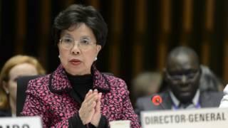 Zika: OMS declara emergência internacional por microcefalia