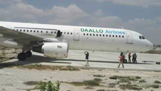 डालो एयरलाइन का विमान