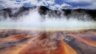 ¿Cuál es la temperatura más alta a la que puede sobrevivir un ser vivo?