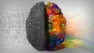 ¿Existen diferentes personalidades según la parte del cerebro que más utilizamos?