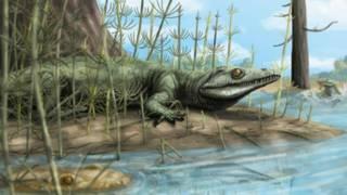 Рептилия Teyujagua paradoxa