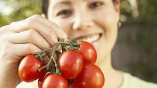 Os cinco legumes e verduras que você pode cultivar em casa – e o bem que eles fazem