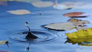 Por qué el agua es tan excepcional... e insólita