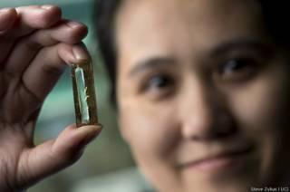 Como cientistas criaram por acidente uma bateria que dura a vida toda