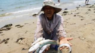 Вьетнам: рыбак держит в руках мертвую рыбу