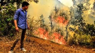 उत्तराखंड के जंगलों में लगी आग.